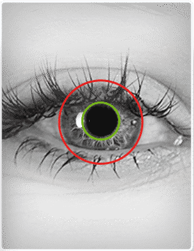 Biometric eyes modalities