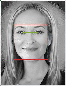 Biometric face modalities