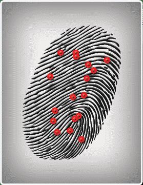 Biometric fingerprint modalities