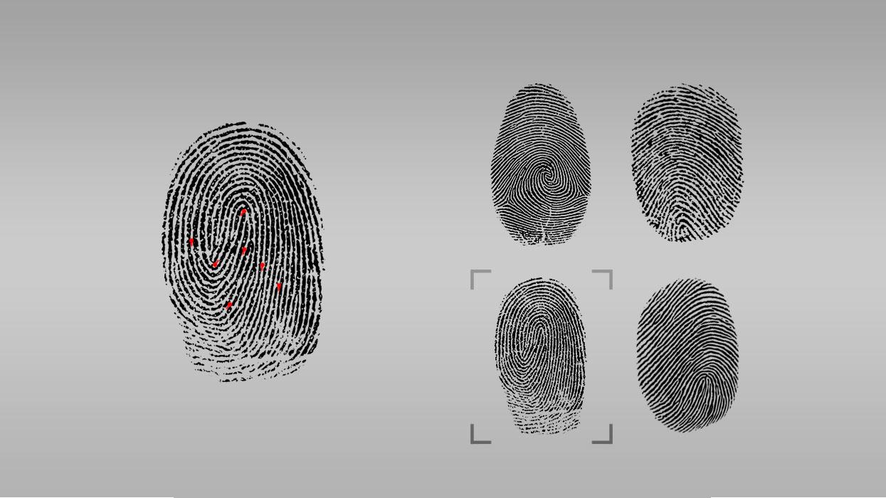 Powerful Biometric matching