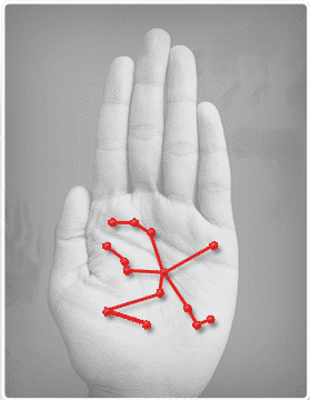 Biometric palmprint modality